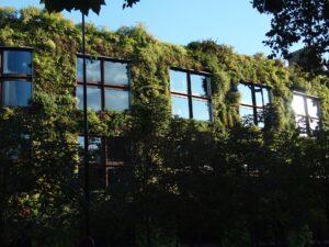 urbanisme-vert-espace-vert-attractivité-ville-bien-etre-mur-getal